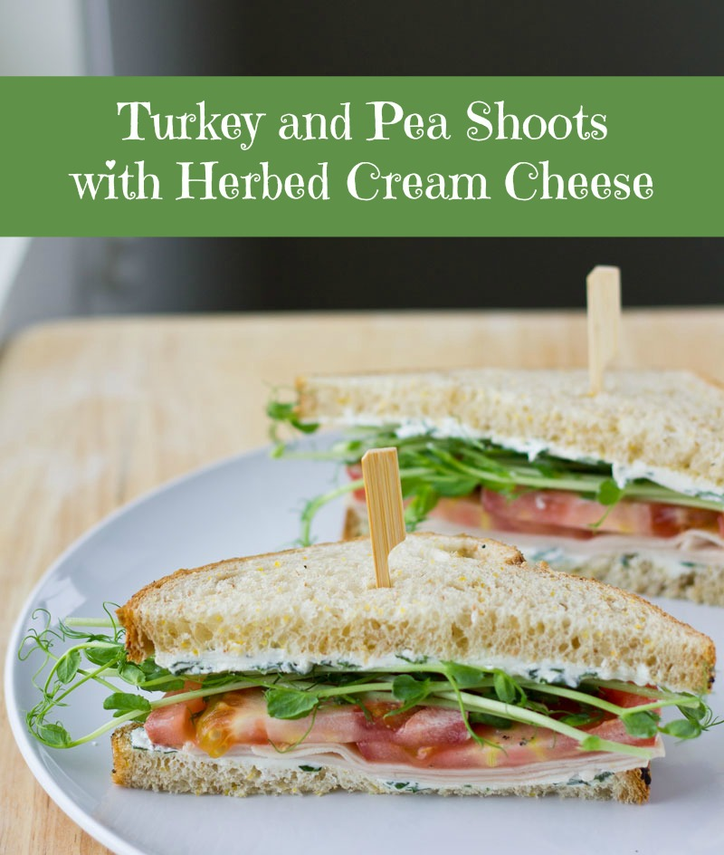 Turkey and Pea Shoots with Herbed Cream Cheese | Culinary Hill