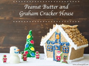 Peanut Butter and Graham Cracker House | Culinary Hill #shop