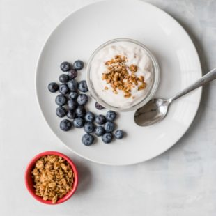 Yogurt and blueberries on a white plate with a side of oats.