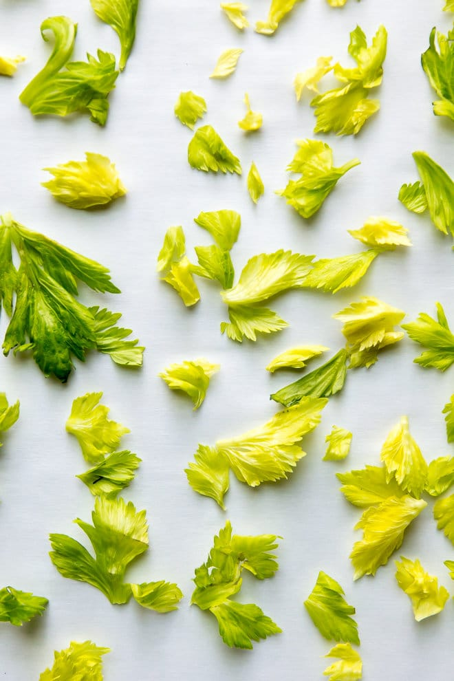 Put your leftover celery leaves to work in this EASY Homemade Celery Salt Recipe! It tastes even better when you make it yourself.