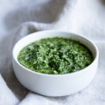 A fresh and simple Cilantro Mint Sauce recipe that is great for appetizers, grilled meats, or vegetables! Ready in minutes.