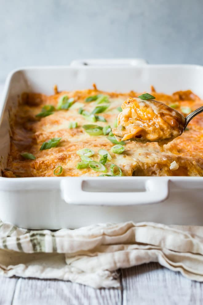 The best Sour Cream Chicken Enchiladas! Corn tortillas are stuffed with a creamy, cheesy filling and topped with buttery enchilada sauce and even more cheese!