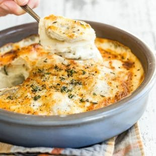 The epitome of traditional comfort food, scalloped potatoes seem to feed the stomach and even the soul-- maybe it's because so many grandmas in the world made them for their loved ones! I'll walk you through how to make a creamy cheddar cheese sauce for this casserole that's simple and completely satisfying. I guarantee this will be the first empty dish at any potluck.