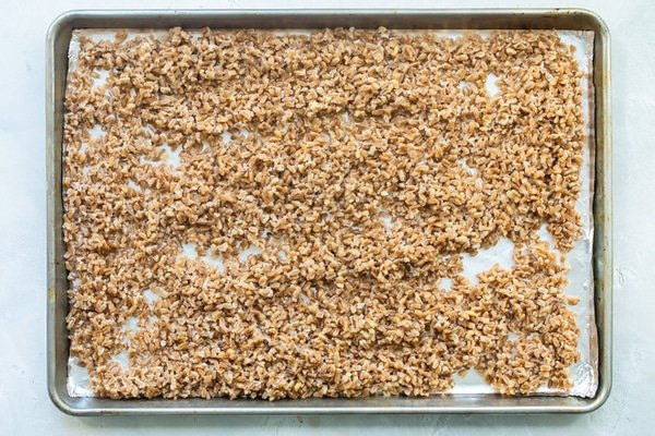 Cooked farro on a baking sheet.