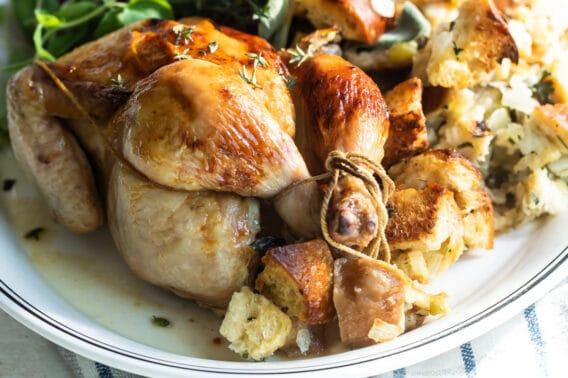 A whole Cornish hen on a gray plate with stuffing.
