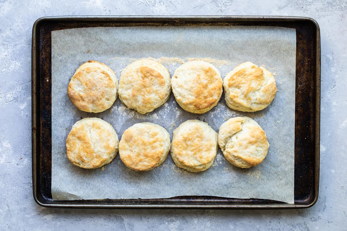 Biscuits on a sheet tray after baking.