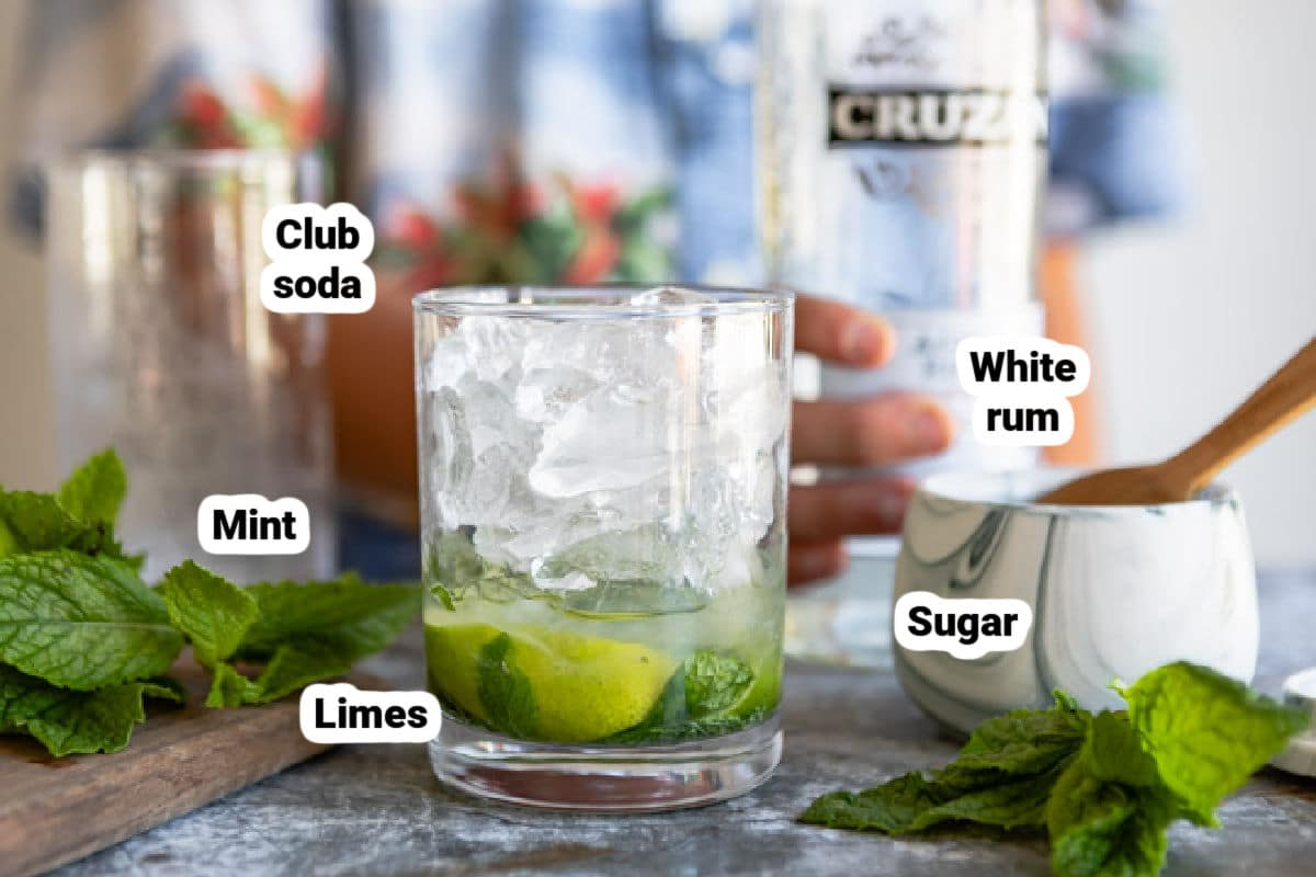 Mojito ingredients labeled.