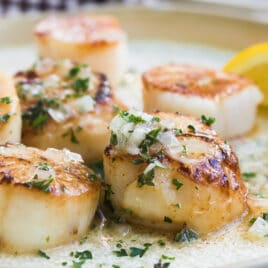 Pan-seared scallops with a lemon butter sauce on a white plate.