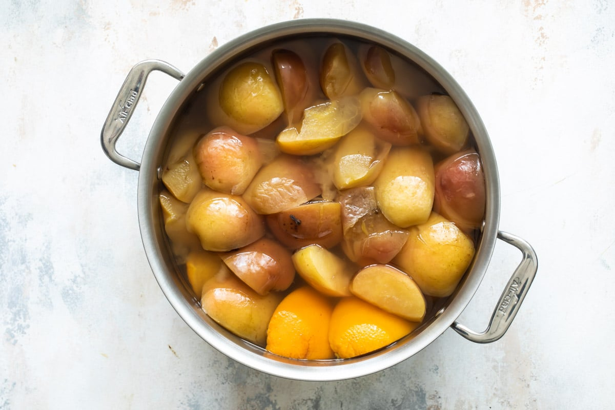 A stock pot with ingredients for apple cider.
