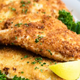 Chicken Schnitzel garnished with a lemon and parsley.